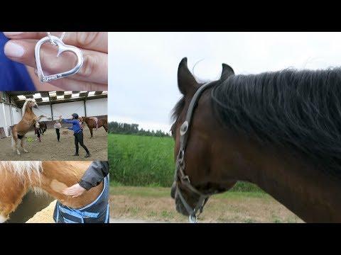 De vlogs die het niet hebben gered...   Romy Oudshoorn