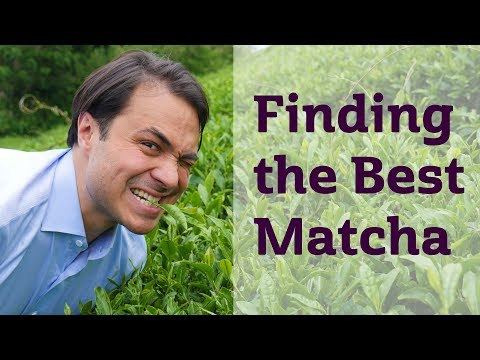 Finding the Best Matcha