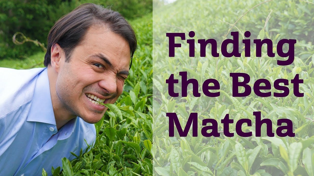 Finding the Best Matcha |JAPAN TRIP
