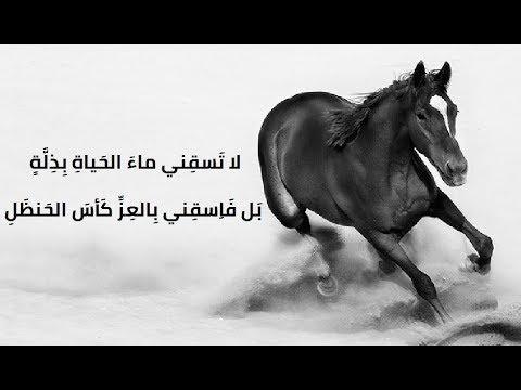 أروع ما قيل في الفخر وعزة النفس حكم سيوفك في رقاب العذل Youtube
