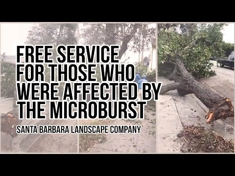 Free help for Affected by the Microburst Santa barbara