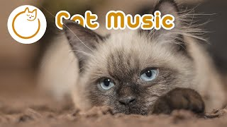 Long Cat Music! 10 Hours of Anti-anxiety Sleep Music for Cats and Kittens!