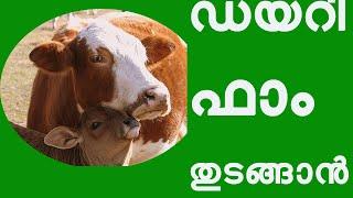 ഡയറി ഫാം തുടങ്ങാന് അറിഞ്ഞിരിക്കേണ്ട  കാര്യങ്ങൾ How to Start A Dairy Farm in Kerala