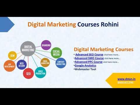 DMSN Digital Marketing Course In Rohini