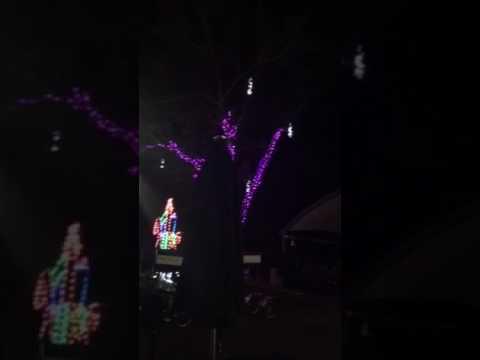 Zoo Miami Christmas Lights