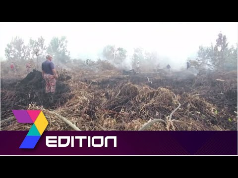 Transboundary Haze Pollution |Malaysia To Send Diplomatic Note To Indonesia Over Forest Fires
