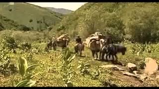 Сағындырған жайлауым 2 бөлім Шыңжаң Алтай Қытай Қазақтары