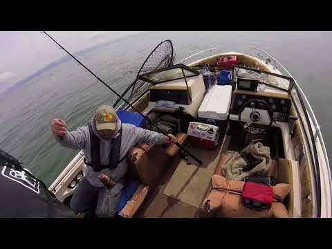 Double J Fishing The Bay