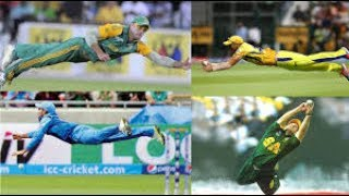 IMPOSSIBLE CATCH IN CRICKET !!!