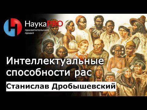 Станислав Дробышевский - Интеллектуальные способности разных рас