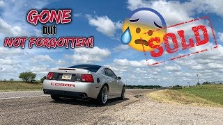 One Last Ride | Mustang Terminator Cobra SOLD!