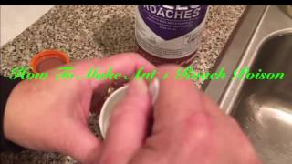How To Kill Ants The Best Ant Killer Ever with Tracy Elman