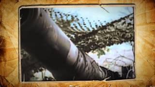 Мифы о великой войне. (Миф 2) «Советские воины плохо сражались в начале войны»