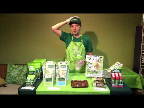Moringa Greens and Proteins Smoothie Mix Demo Training