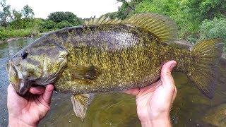 Wade Fishing River Smallies
