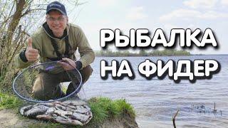 Рыба на фидер клюёт взаброс Дяде Фёдору остаётся только подобрать самый результативный крючок...