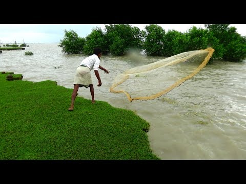 Cast Net Fishing at sea with beautiful natural | Sea Fishing by #Daily Village Life (Part-3)