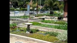 Sunland water gardens - growing grounds