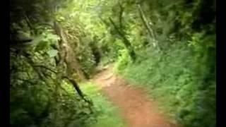 Sree Kerala Varma Docu -Fiction Trial Song