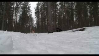 Voyage Finlande avec 66° Nord: séjour multi activités à Hossa