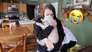 I LOST YOUR DOG PRANK ON GIRLFRIEND!!!