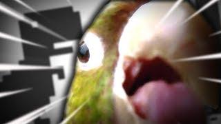 Czy to brak Internetu? || Ultimate Chicken Horse