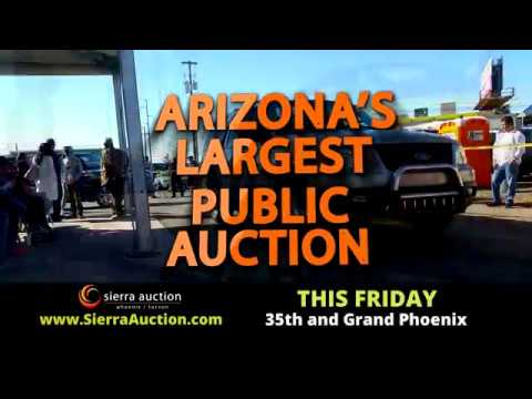 Sierra Auction Phoenix Friday