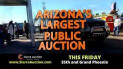 Sierra Auction Phoenix Friday