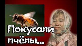 VLOG. Меня покусали пчелы. Завтрак, обед и ужин деревенской женщины.