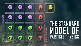 The Building Blocks of the Universe | Elementary Particles Explained (1/2)