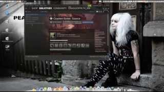 Linux und Spiele: Steam unter Linux Mint 13 (Maya) installieren - komplett [deutsch][german]