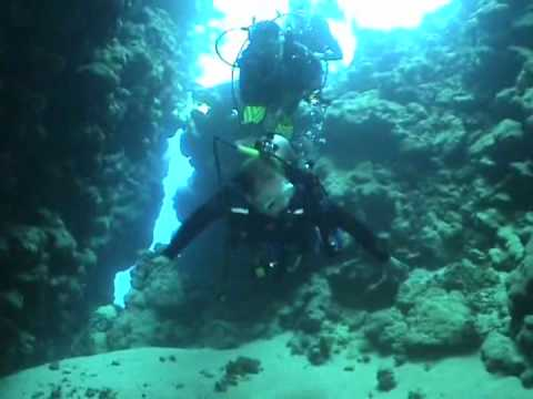 SCUBA diving in the Northern Red Sea (2005)