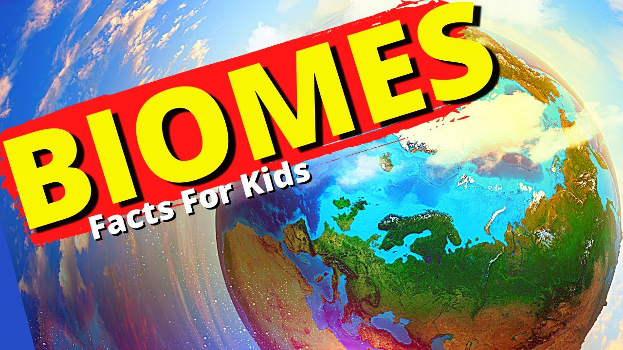 What Are Biomes? |Biome Facts for Kids |Aquatic, Desert ...