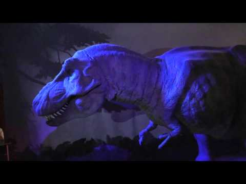 T-Rex Dinosaur Animatronic - Natural History Museum London