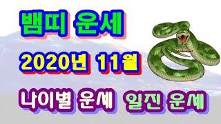 11월 뱀띠 운세   2020년 11월 경자년 정해월 뱀띠 일진 사주 운세보기