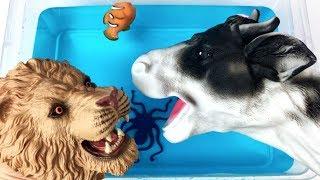 Wild Animals Run into the Spo Spo Toy Box Learn Animals Name Sound