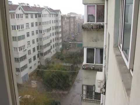 First snow fall of the year 2009 in Qingdao 3