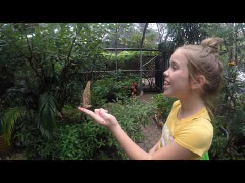San Antonio Zoo 2016