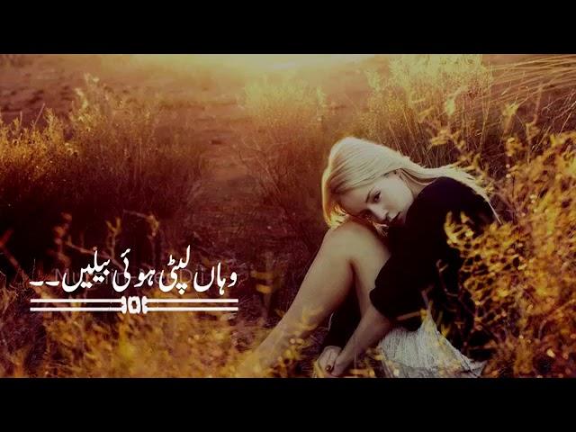 Pakistani Hit Drama Sad Dialogues Whatsapp Status Pakistani