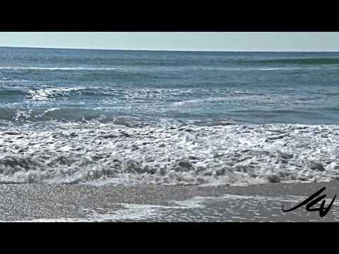 Pescadero State Beach  A California State Park - YouTube