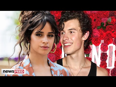 Shawn Mendes & Camila Cabello CONFIRM STEAMY New Collaboration!
