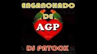 ► ★ Agapornis mix ♪ By★Dj PaToOx ® ★ ♪