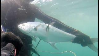 Spearfishing Goa rainy season Storm Failed
