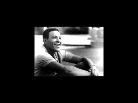 Marvin Gaye - Sunny (Mercury Edit II)