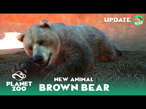 The Himalayan Brown Bear - Planet Zoo new Animal - New Footage |