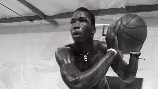 Cheick Diallo - Explosive Athletes Institute Testimonial