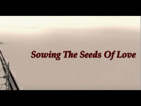 Sowing The Seeds Of Love By Tears For Fears Lyrics Below