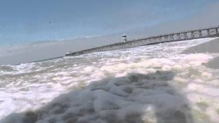 Matilda At Seal Beach