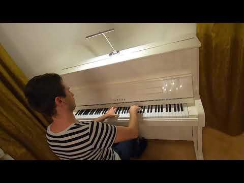 Roman Nagel - Wedding-Pianist