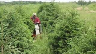 Tree Farm Mowing with Ventrac